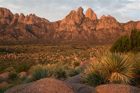 Organ Mountains WSA | The Organ Mountains WSA is located