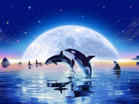 Whales and Dolphins - Fantasy Wallpaper ID 1662599